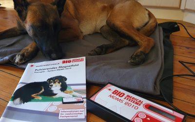 Magnetfeldtherapie für Hund und Pferd